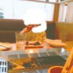 ジ・アウトレット広島の串屋物語で2歳3歳子連れランチ